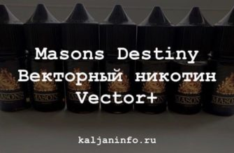 Обзор на masons destiny на векторном никотине vector+